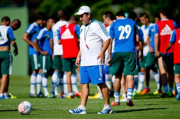 Jogo Palmeiras x Ceará série B - Brasileirão 2013 - Kleina